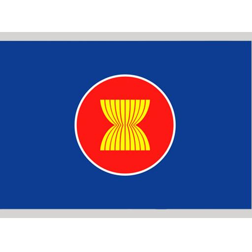 Asian Flag Starmicronics